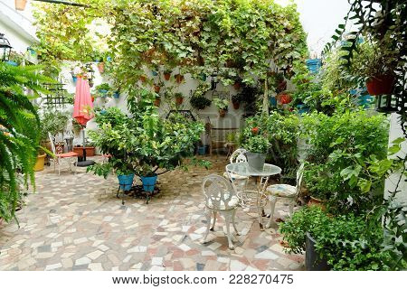 Traditional Patio With Flowers And Plant Decoration In Mijas, Andalusia, Spain.