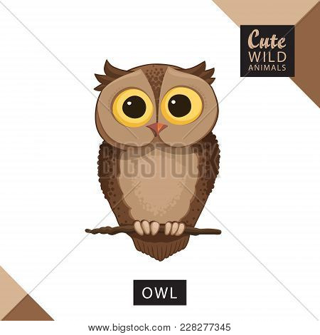 A Cute Owl Sits On A Branch. Vector Illustration From Wild Animals Series. A Picture For Children's