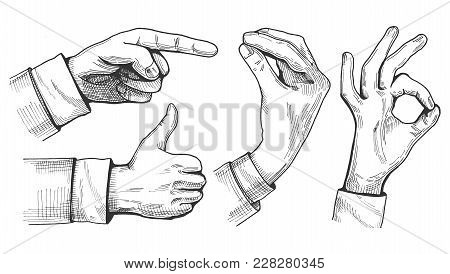 Vector Illustration Of A Set Of Male Hand Gestures. Pointing Finger, Like Or Thumb Up, Italian Gestu