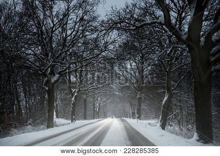 Single Car Is Driving Carefully In The Snow On A Country Road Lined By Dark Bare Trees, Dangerous Wi