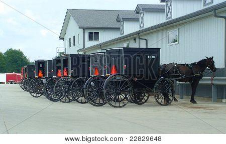 Amish Buggies Parked at Market