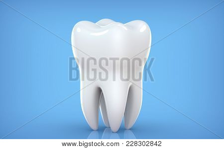 Dental Model Of Premolar Tooth, 3d Rendering On Blue Backgroun. 3d Illustration As A Concept Of Dent