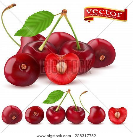 Highly Realistic Vector Ripe Juicy Cherry With Slices, Natural Texture. Templates Advertising Juice,