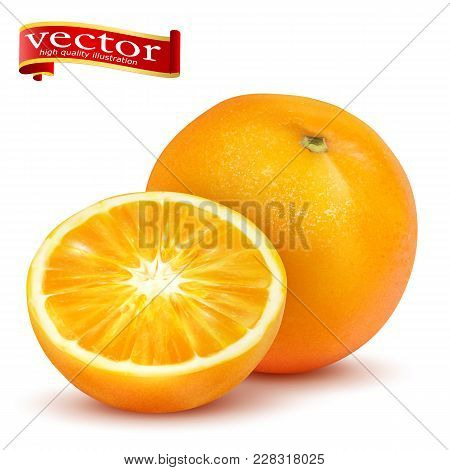Ripe Juicy Sweet Whole Orange And Slice Vector Realistic 3d Illustration Of High Detail. Orange Whol