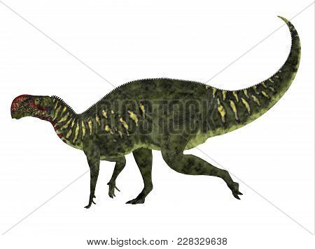 Altirhinus Dinosaur Side Profile 3d Illustration - Altirhinus Was An Iguanodont Herbivore Dinosaur F