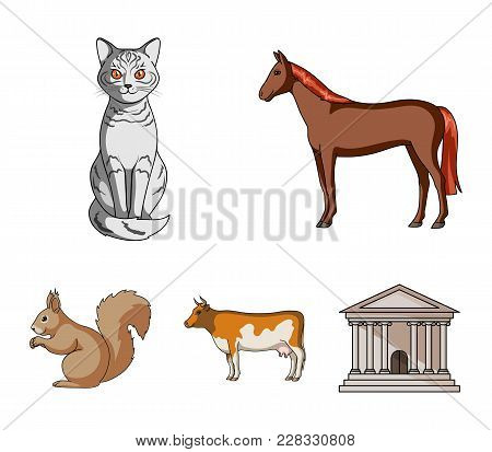 Horse, Cow, Cat, Squirrel And Other Kinds Of Animals.animals Set Collection Icons In Cartoon Style V