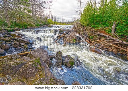 Roaring Cascade In The North Woods On Jasper Lake In The Boudnary Waters Of Minnesota