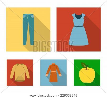 Dress With Short Sleeves, Trousers, Coats, Raglan.clothing Set Collection Icons In Flat Style Vector