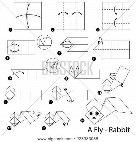 Step By Step Instructions How To Make Origami A Fly Rabbit