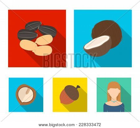 Coconut, Acorn, Sunflower Seeds, Manchueian Walnut.different Kinds Of Nuts Set Collection Icons In F