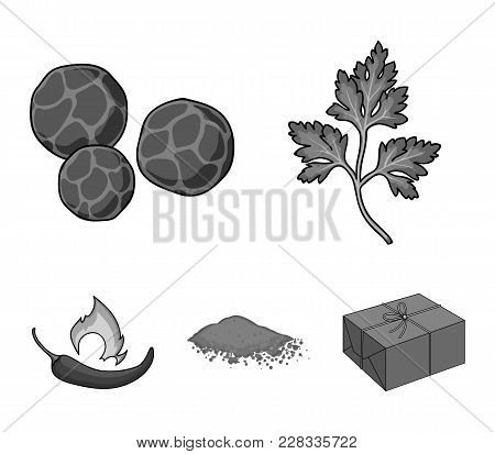 Ptrushka, Black Pepper, Paprika, Chili.herbs And Spices Set Collection Icons In Monochrome Style Vec