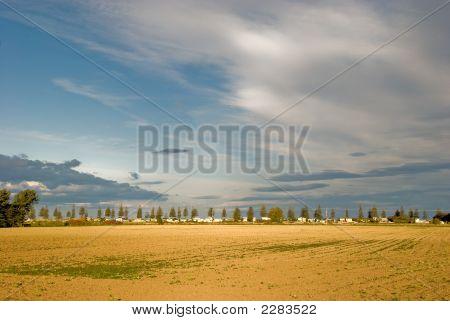 Brown Field Blue Sky