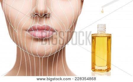 Cosmetic Oil Applying On Young Woman With Lifting Lines. Beauty Therapy Concept. Graphic Lines Showi