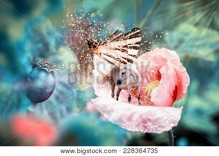 White Fairy Unicorn With Butterfly Wings On Blooming Pink Poppy Flower. Realistic Fairytale Magic Ma
