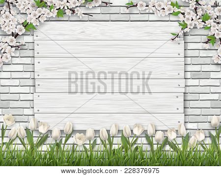 White Wooden Sign Nailed To The Brick Wall. Green Grass, Tulip Flower And Blossom Tree Branches In T