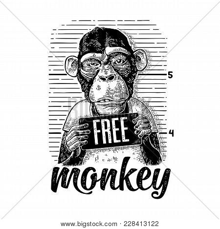 Arrested In A T-shirt Holding A Police Department Table. Free Monkey Lettering. Vintage Black Engrav