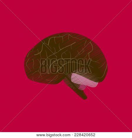 Flat Shading Style Icon Brain Medical Care