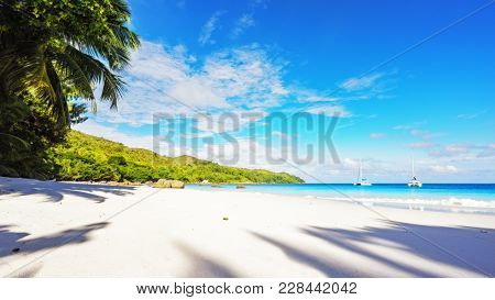 Paradise Beach.white Sand,turquoise Water,palm Trees At Tropical Beach,seychelles 26