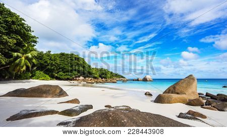 Paradise Beach.white Sand,turquoise Water,palm Trees At Tropical Beach,seychelles 42