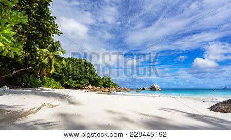 Paradise Beach.white Sand,turquoise Water,palm Trees At Tropical Beach,seychelles 5