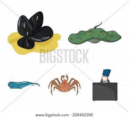 Electric Ramp, Mussels, Crab, Sperm Whale.sea Animals Set Collection Icons In Cartoon Style Vector S