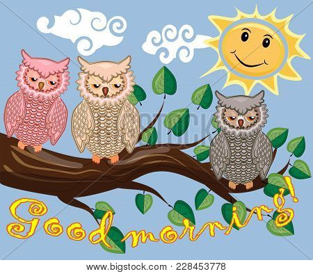 An Unhappy, Sleepy Owl On A Tree Branch In The Morning, The Sun Shines And Smiles. Inscription Good