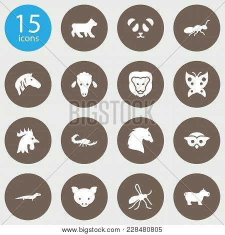 Set Of 15 Animal Icons Set. Collection Of Lion, Pig, Scorpion And Other Elements.