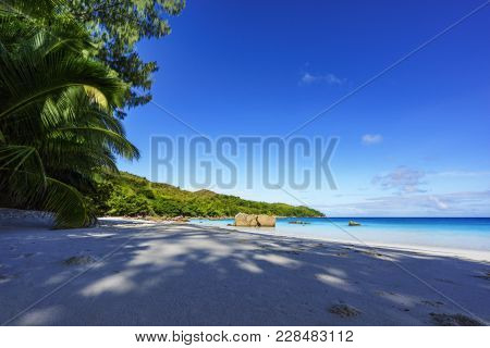 Paradise Beach.white Sand,turquoise Water,palm Trees At Tropical Beach,seychelles 18