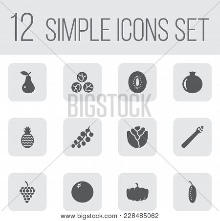 Set Of 12 Fruit Icons Set. Collection Of Redcurrant, Pomegranate, Orange And Other Elements.