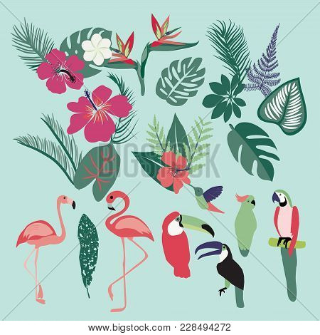 Vector Tropical Set Of Tropical Elements. Palm Leaves, Tropical Plants, Flowers, Leaves, Birds, Bird