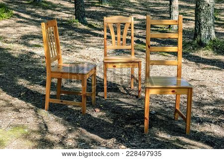 Three Lonely Standing Chairs In A Pine Forest On A Sunny Day.