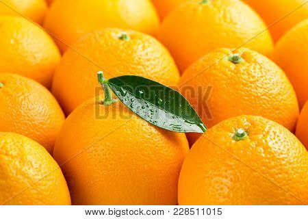 Fresh Orange Fruits With Green Leaf With Drops.  Short Depth Of Field, With Focus On The Green Leaf.