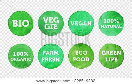 Bio, Veggie, Farm Fresh, Vegan, 100 Organic And Local Food Product Label Icon Set. Vector Green Eco