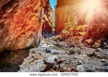 Narrow Canyon Trail Located In Samaria Gorge In Central Crete