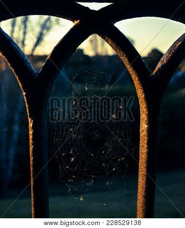 Eroded Fence With Spiderweb At Sunny Day