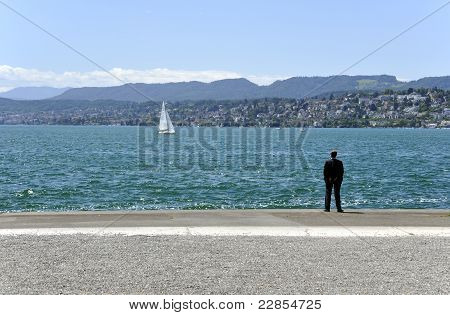 Businessman In Lake Long View