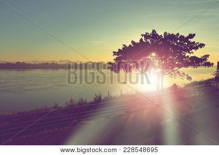 Sunbeam Through Tree On The Banks Of Mekong River In Thailand