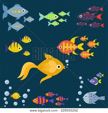 Aquarium Ocean Fish Underwater Bowl Tropical Aquatic Animals Water Nature Pet Characters Vector Illu