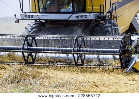 Harvesting Wheat With A Combine Harvester. Field Of Ripe Wheat. Agricultural Machinery.
