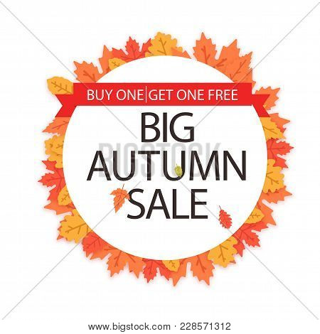 Big Autumn Sale Buy One Get One Free Maple Leaf Circle Frame Background Vector Image