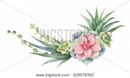 Watercolor Wreath Of Cacti And Succulent Plants Isolated On White Background. Flower Illustration Fo