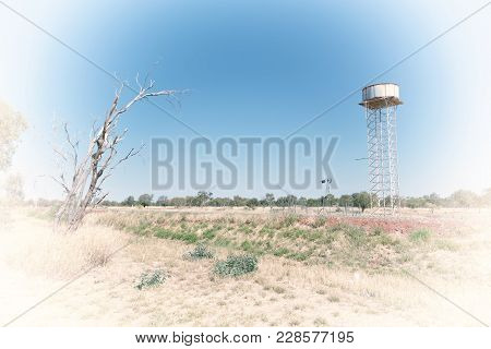 In The Outback With Asphalt Line  And Water Tank