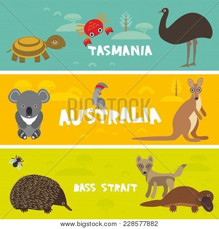 Cute Animals Set, Echidna Koala Platypus Ostrich Emu Cockatoo Parrot Turtle Kangaroo Dingo Crab Kids