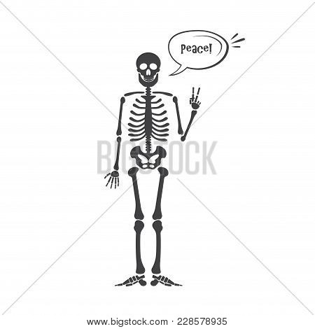 Swell Skeleton Human Anatomy Image Photo Free Trial Bigstock Wiring Cloud Tziciuggs Outletorg