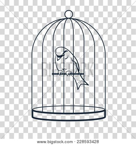 Bird In A Cage Silhouette
