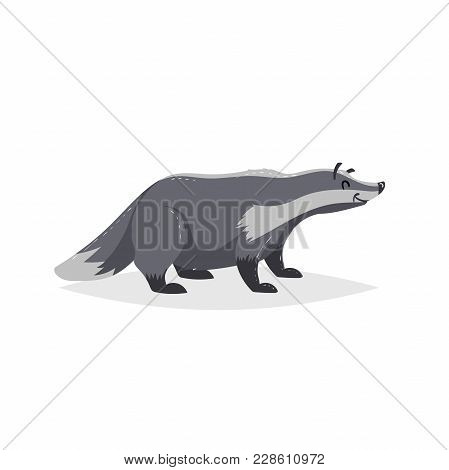 Cartoon Cheerful Badger. Forest Europe And North America Animal. Flat With Simple Gradients Trendy D
