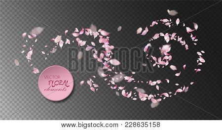 Vector Pink Flying Petals With Blurred Defocused Transparent Detail.