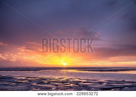Beautiful Sunset With The Oceans Tide Coming In And Large Flocks Of Wild Birds. Orange And Purple Sk