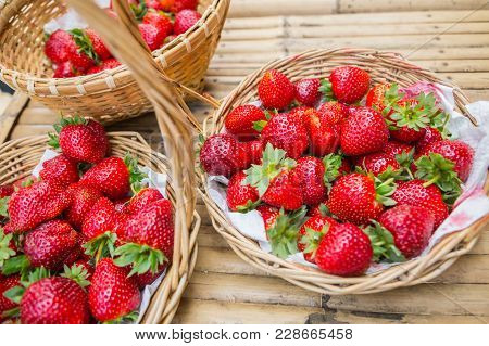 Closeup Of Fresh Organic Strawberry On Bush With Green Leaves Growing In The Garden, Copy Space.