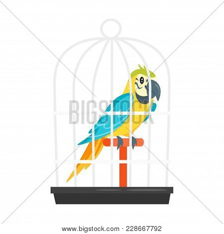 Vector Cartoon Style Illustration Of Home Animal Pet Parrot In Birdcage. Isolated On White Backgroun